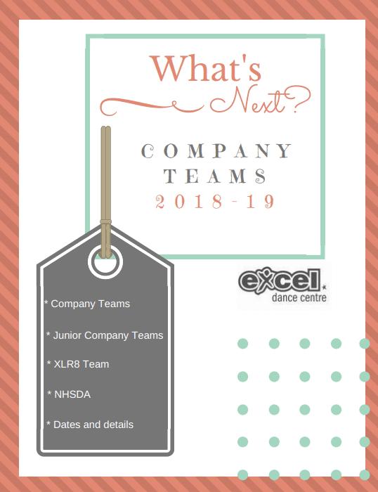 Excel Company Team Info 2018-2019